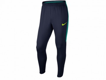 Брюки тренировочные Nike Training Trousers Dry Obsidian/Rio Teal 807684-451