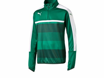 Свитер тренировочный Puma Veloce 1 4 Zip Training Top Power Green 654641 051