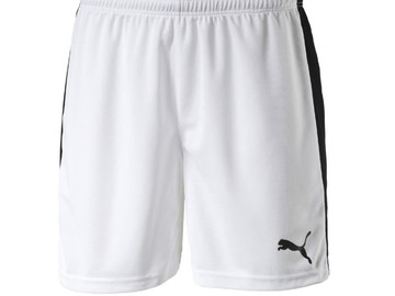 Шорты игровые Puma Pitch Shorts Without Innerbrief white-bleu 702072 04