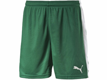 Шорты игровые Puma Pitch Shorts Without Innerbrief power green 702072 05