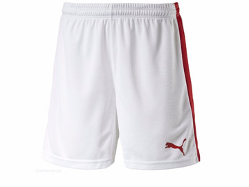 Шорты игровые Puma Pitch Shorts Without Innerbrief white-pu 702072 12