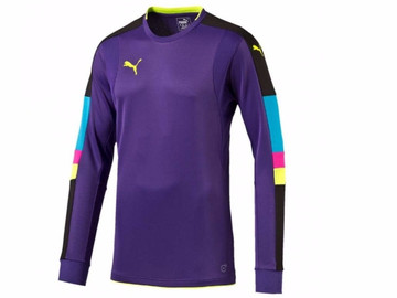 Свитер Вратаря Puma Tournament GK Shirt 702194 32