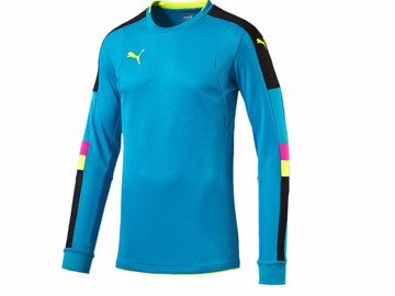 Свитер Вратаря Puma Tournament GK Shirt 702194 33