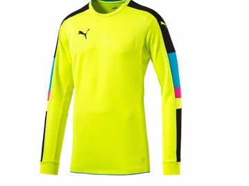 Свитер Вратаря Puma Tournament GK Shirt 702194 34
